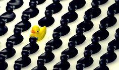 El síndrome de alta exposición tiene que ver con que cuando te destacas por encima de los demás, tienden a odiarte y a censurarte.