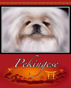 Pekingese glass cutting board by TheCopperMare on Etsy