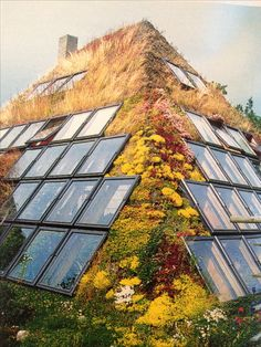 Exterior This earth sheltered home is inspired by nature itself. The organic material with natural flowers sticks and earth make this Eco Style. Earth Sheltered Homes, Earthship Home, Earthship Design, Underground Homes, Natural Building, Green Building, Building A Shed, Earth Homes, Exterior Design