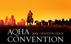 You have a voice in YOUR Association! Join us for the 2013 AQHA Convention - March 8-11 in Houston. Learn more: http://www.aqha.com/News/News-Articles/01282013-AQHA-Convention.aspx