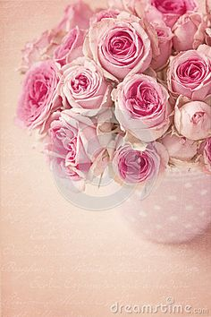 Pink roses in a vase on pink background