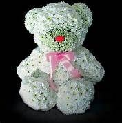animal flower arrangements - Yahoo Image Search Results