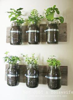 mason jar herb garden hessm24  http://media-cache7.pinterest.com/upload/63402307224142986_K6twqDdl_f.jpg