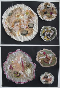 mould Growth And Decay, A Level Textiles, Bio Art, Petri Dish, Textiles Techniques, A Level Art, Gcse Art, Natural Forms, Fabric Manipulation