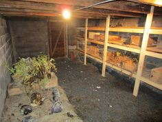Back in the old days, a root cellar was not a luxury, but instead was just as essential as our refrigerators are to us today. A well-constructed root cellar can be a real life-saver — especially if you live off the grid, in remote areas or in places where power outages can be problematic. If ...