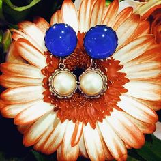 Royal blue dangle buttons ⚜ 18€ ⚜ #tijoux #jewelry #jewellery #schmuck #schmuckstück #handmade #love #joy #flower #blume #royal #blue #blau #ohrringe #earrings #mode #fashion #münchen #munich #musthave #modeschmuck #etsy
