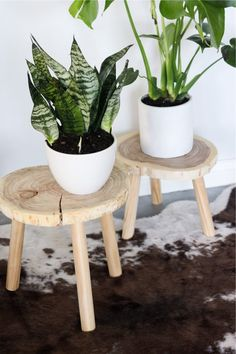 If you're looking for a simple way to organize and display all of your plants, then you need to check out these awesome indoor / outdoor DIY plant stand ideas for inspiration! #plantstand #gardenideas #indoorplants #diy Big Indoor Plants, Hanging Plants, Indoor Garden, Indoor Outdoor, Wood Plant Stand, Plant Stands, Deco Boheme, Diy Holz, Diy Interior