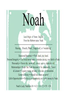 Meaning of Noah