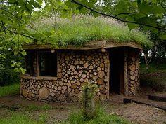 Bio-Arquitectura, techo vivo