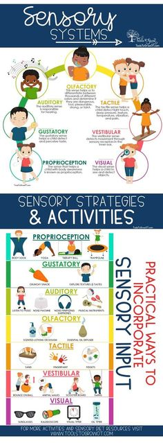 Sensory Diet - Tools to Grow Sensory Diet: Practical Ways to Incorporate Sensory Input for children and students. Includes Discussion of Sensory Systems, Evidence Base Research on Sensory Diets, and free printables to create a Sensory Diet. Sensory Therapy, Sensory Tools, Sensory Diet, Sensory Issues, Diy Sensory Toys, Sensory Integration Therapy, Baby Sensory, Pediatric Occupational Therapy, Pediatric Ot