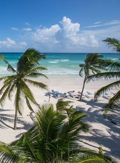 Appropriately named, The Beach Tulum hotel is a water lover's dream in the centre of the Riviera Maya's bohemian paradise. In addition to a private stretch of white sand, this boutique retreat has two winding pools with overwater walkways.