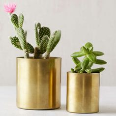 Schoolhouse Electric Brass Planter | | Copy Cat Chic | chic for cheap | Bloglovin'