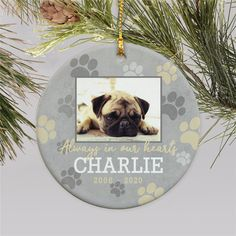 Place this Personalized Always In Our Hearts Paw Print Ornament on your Christmas tree year after year for a beautiful remembrance of your four legged friend. Dog Christmas Ornaments, Memorial Ornaments, Photo Ornaments, Christmas Dog, Crop Tool, Word Art Design, Personalized Christmas Ornaments, Pet Life, Pet Memorials
