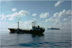 VN merchant coastal freighter TAN NAM VIET, with USS TUSCALOOSA (LST-1187) in background
