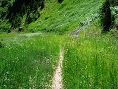 easy utah hike - black forest loop (sundance)