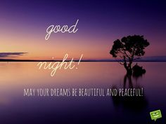 good night! May your dreams be beautiful and peaceful.