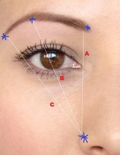A) From where your outer nostril (or if you have a wider nose, start next to the tip) & inner eye point line up -This is where your brow should start.  B) From nose through the centre of your eye - This is where your brow should arch.  C) From nose through the outer eye point - This is where your brow should end.