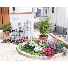 Potager Garden, Garden Landscaping, Exterior, Backyard, Patio, Wow Products, Flower Beds, Amazing Gardens, Container Gardening
