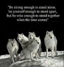 Image result for alpha female wolf quotes