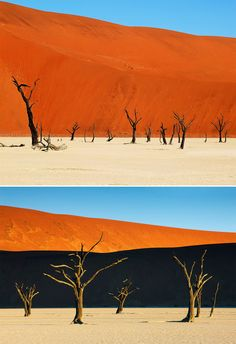 Deadvlei, Namibia: The black, dead trees against the orange sand dunes in the Namib-Naukluft National Park make the Deadvlei landscape look like a scene out of a painting.  Source: Shutterstock, Corbis Images