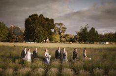 Daylesford wedding at Sault lavander farm. Daylesford lavander farm wedding. Perfection. www.shaunguestphotography.com.au