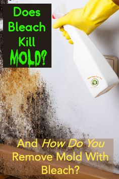 Does bleach kill mold? Everything you need to know about killing black mold with bleach, spraying bleach on mold, & if cleaning mold with bleach makes mold worse. How To Kill Mold, How Do You Remove, How Do You Clean, How To Lighten Hair, Kill Black Mold, Clean Black Mold, Cleaning Mold, Diy Cleaning Products, Cleaning Hacks