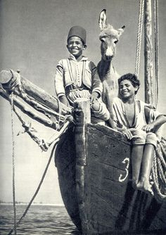 Happy smiles, Egyptian kids & a donkey Old Egypt, Ancient Egypt, Old Pictures, Old Photos, Vintage Photographs, Vintage Photos, Portraits Victoriens, Egyptian Women, Egyptian Beauty