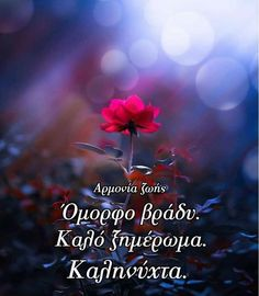 Greek Quotes, Sweet Dreams, Good Night, Movie Posters, Nighty Night, Film Poster, Popcorn Posters, Film Posters, Good Night Wishes