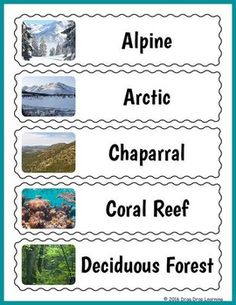 Decorate a wall of your science center or another part of your classroom with these colorful Earth biomes word wall slips.  They would make a great addition to the classroom while studying a unit on habitats or ecosystems.Each slip has a high quality photo image of one of the wolrd's major biomes along with the name of the biome. Fun Activities For Kids, Worksheets For Kids, Educational Activities, Printable Puzzles, Classroom Fun, Biomes, Vocabulary, Morning Work, Teaching