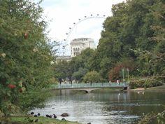 London eye vista do parque Saint James- agosto de 2014.