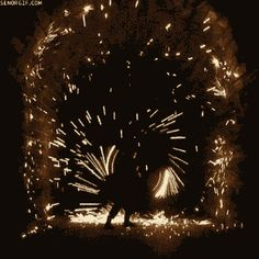 Find GIFs with the latest and newest hashtags! Search, discover and share your favorite Hypnotic GIFs. The best GIFs are on GIPHY. Fire Works, Photo Awards, Steel Wool, Cg Art, Gothic Architecture, Jolie Photo, Sparklers, Color Theory, Historical Sites