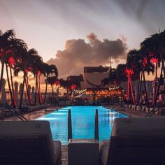 Music and Miami go together like 1 Hotels and nature… Read about the top 5 songs of summer in South Beach.