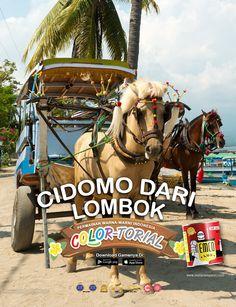 Kawan EMCO, menikmati cidomo sambil berkeliling tempat wisata di Lombok memang mengasyikkan karena memang Lombok mempunyai pesona tersendiri. Mengenal kekayaan alam Indonesia juga dapat Anda lihat melalui Game COLOR TORIAL yang membuat Anda makin mencintai negeri sendiri. Unduh game COLOR TORIAL di App Store https://itunes.apple.com/id/app/colortorial/id1135159964?mt=8 maupun Google Play Store https://play.google.com/store/apps/details?id=com.matarampaint.emco.colortorial