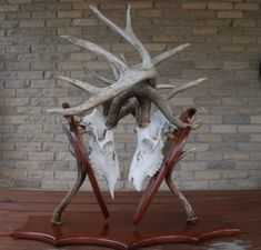 double deer mount