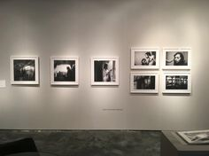 """""""Photography lovers check out booth Fine Art Photography, January 20, Contemporary Art, Gallery Wall, Palm Beach, Miami, Lovers, Twitter, Home Decor"""