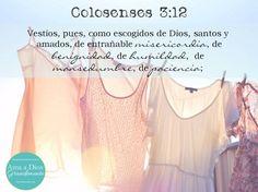 Colosenses 3:12 Vestíos, pues, como escogidos de Dios, santos y amados, de entrañable misericordia, de benignidad, de humildad, de mansedumbre, de paciencia. ♔