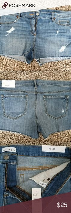 Loft Jean Shorts New, never worn LOFT Shorts Jean Shorts