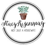Steam Clean Your Mattress! - Stacy Risenmay Steam Clean Your Mattress!
