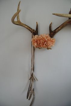 Deer Antlers with Flowers & Feathers - Wall Hanging Taxidermy 7 Point Rack Home Decor Peach Pink Carnations Pheasant Jewelry Necklace Holder Deer Horns, Deer Skulls, Cow Skull, Skull Art, Animal Skulls, Deer Decor, Skull Decor, Rustic Decor, Antler Decorations