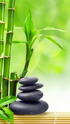 Meditation, Flow, Zen, Chi, all a must in Bamboo Wallpaper, Colorful Wallpaper, Flower Wallpaper, Wallpaper Backgrounds, Wallpapers, Stone Wallpaper, Galaxy Phone Wallpaper, Phone Screen Wallpaper, Cellphone Wallpaper