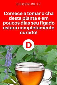 Remédio para fígado | Comece a tomar o chá desta planta e em poucos dias seu fígado estará completamente curado | Trata fígado gordo e a maioria das doenças hepáticas. Saiba como fazer e tomar ↓ ↓ ↓