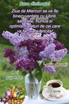Optimism, Plants, Flora, Plant, Planting, Positivity