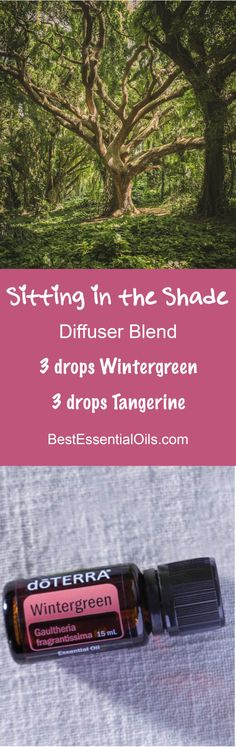 Sitting in the Shade doTERRA Diffuser Blend
