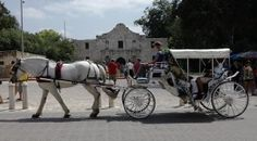 Downtown SA carriage ride