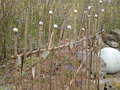 Gartenzaun / fence