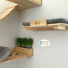 Cat Furniture, Furniture Projects, Home Projects, Pet Beds, Dog Bed, Cat Gym, Cat Towers, Cat Shelves, Cat Playground
