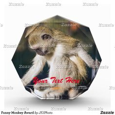 Shop Funny Monkey Award created by JFJPhoto. Showcase Design, Printing Process, Monkey, Awards, Vibrant, Bear, Funny, Animals, Jumpsuit
