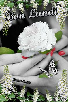 Bon Mardi Humour, Beau Gif, Happy Friendship Day, Burlap Wreath, Good Morning Quotes, Blog, Cards, Smileys, Monet