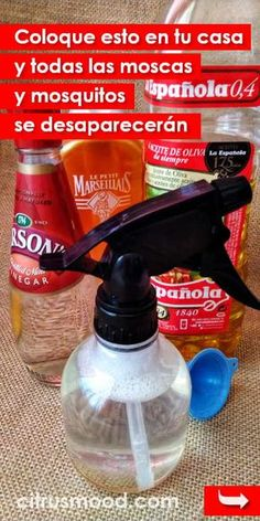 Coloque esto en tu casa y todas las moscas y mosquitos se desaparecerán por completo #moscas #mosquitos #repelente #sintoxico #eliminar Cleaning Hacks, Cleaning Supplies, Home Hacks, Spray Bottle, Personal Care, Tips, Camping, Medicine, Vestidos