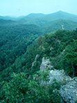 Hiking in Arkansas: Hunt's Loop Trail    Arkansas  Hunt's Loop Trail